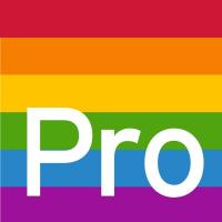 Pro-Recruitment Group logo